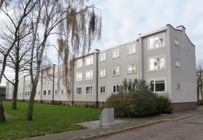 Renovatie Nicolaas Maesstraat e.o. | Oude situatie