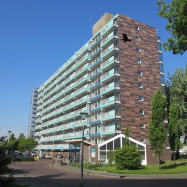 Flats Gerbrandyplein Renovatie