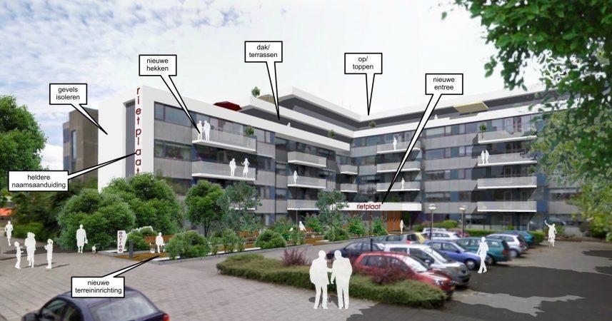 Overzicht werkzaamheden Rietplaat Hoogvliet